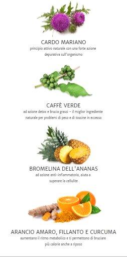 ingredienti ultrametabolismo